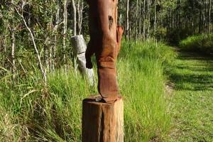 Carved Platypus